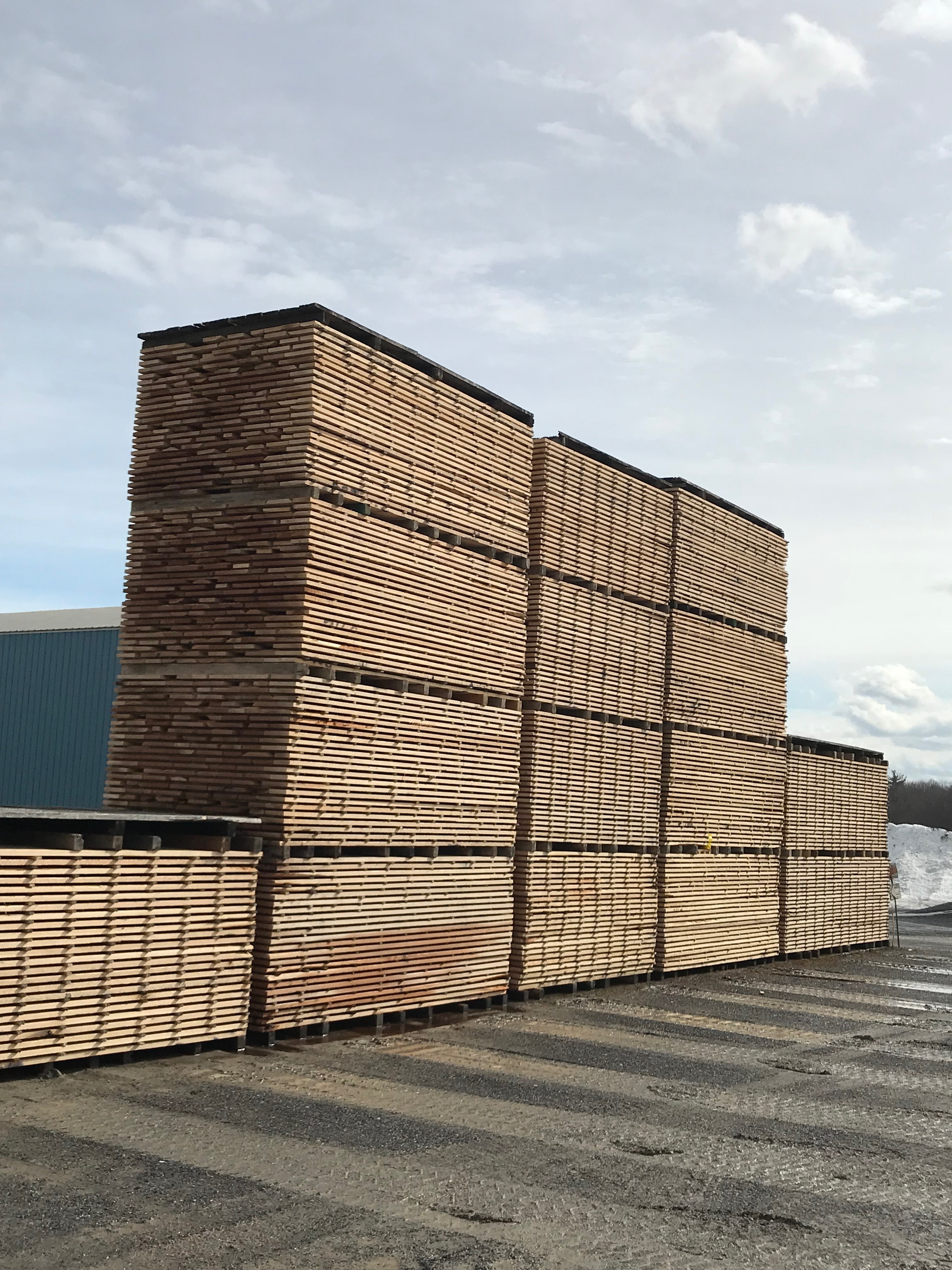 Air dry lumber yard woodland